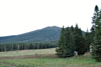 Humphreys and Flagstaff 041