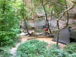 narrows 306