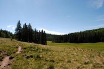 Mt. Baldy 025