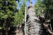 Mt. Baldy 041