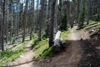 Mt. Baldy 067