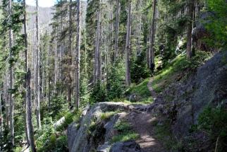 Mt. Baldy 077