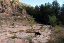 Salt River Canyon Cibecue Falls Fail 020