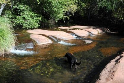 Wet Beaver Crack 093
