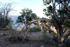 Grand Canyon 4-11-18 (102)