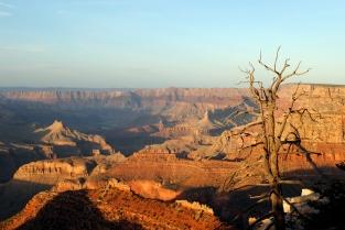 Grand Canyon 4-11-18 (129)