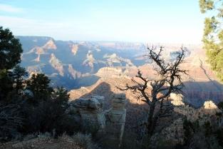 Grand Canyon 4-11-18 (99)